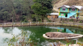 PARADISE LAKE VIEW
